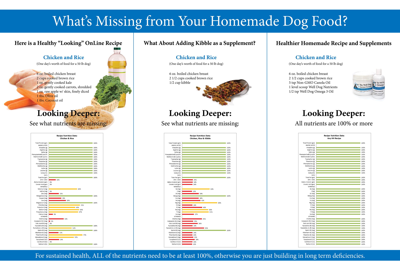 Feed the dog inside image
