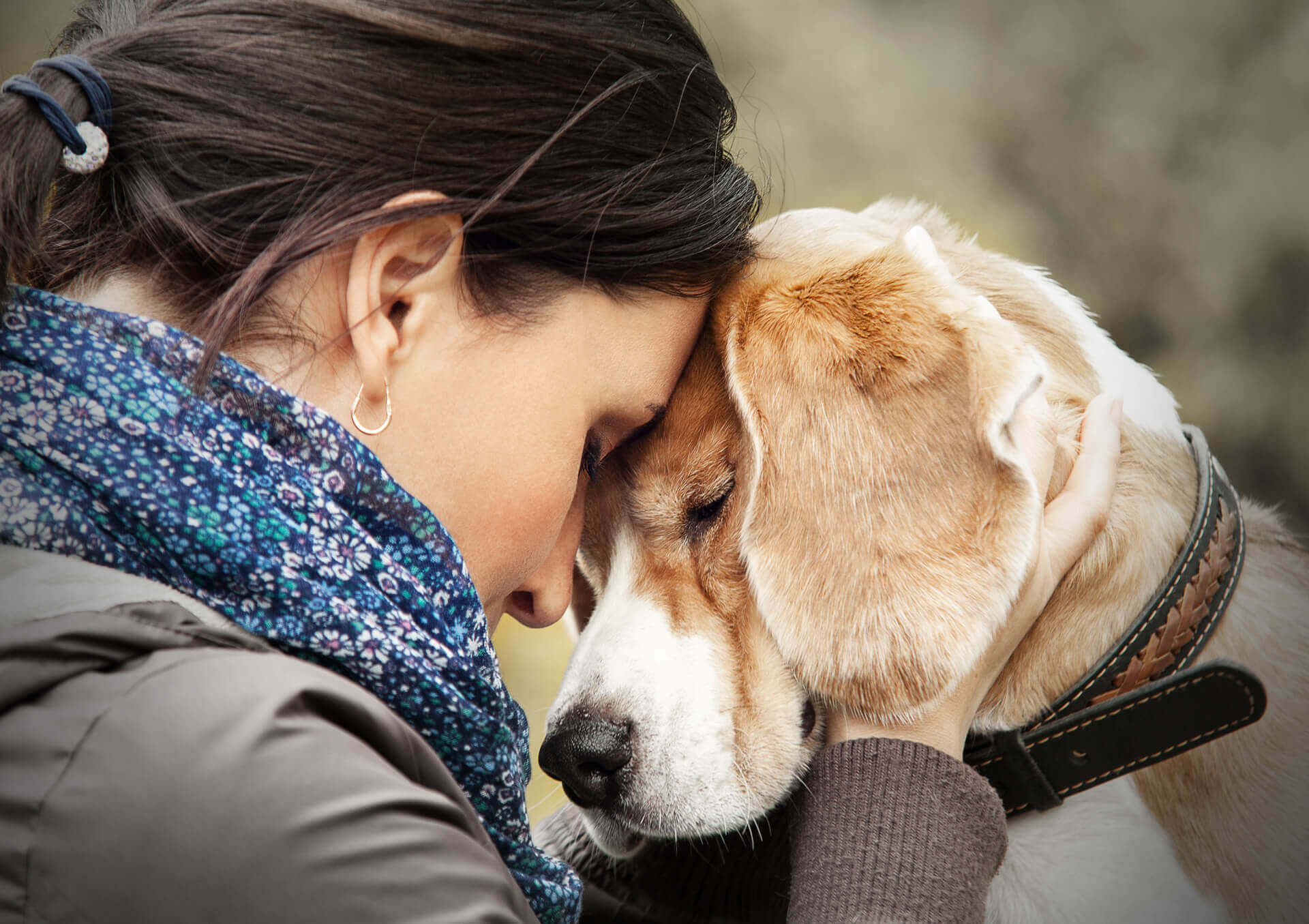 Dog owner and her sick dog, they are touching heads in sadness.