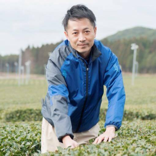 Green Tea Sencha producer in Chiran Japan