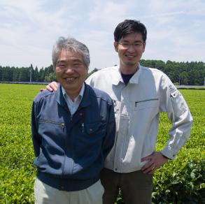 Producteur de thé vert Sencha Bio, à Chiran Japon