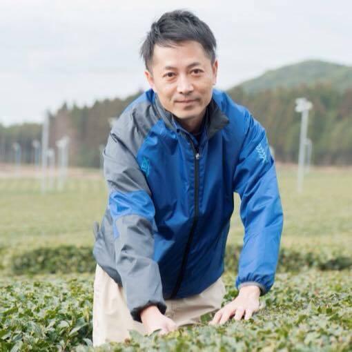 Producteur de thé vert Sencha, à Chiran Japon