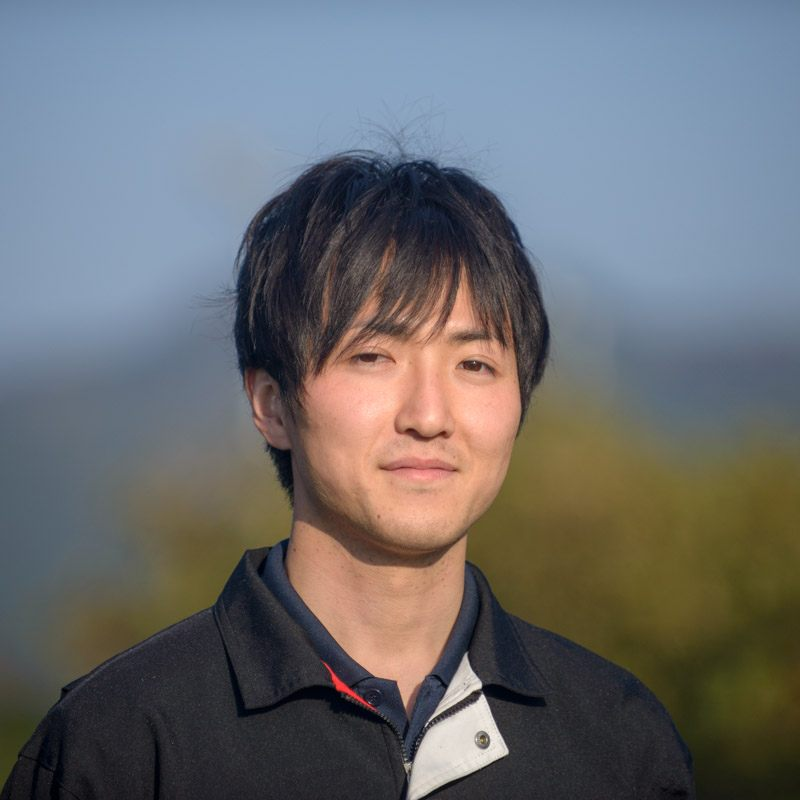Producteur de thé vert Tamaryokucha à Kumamoto Japon