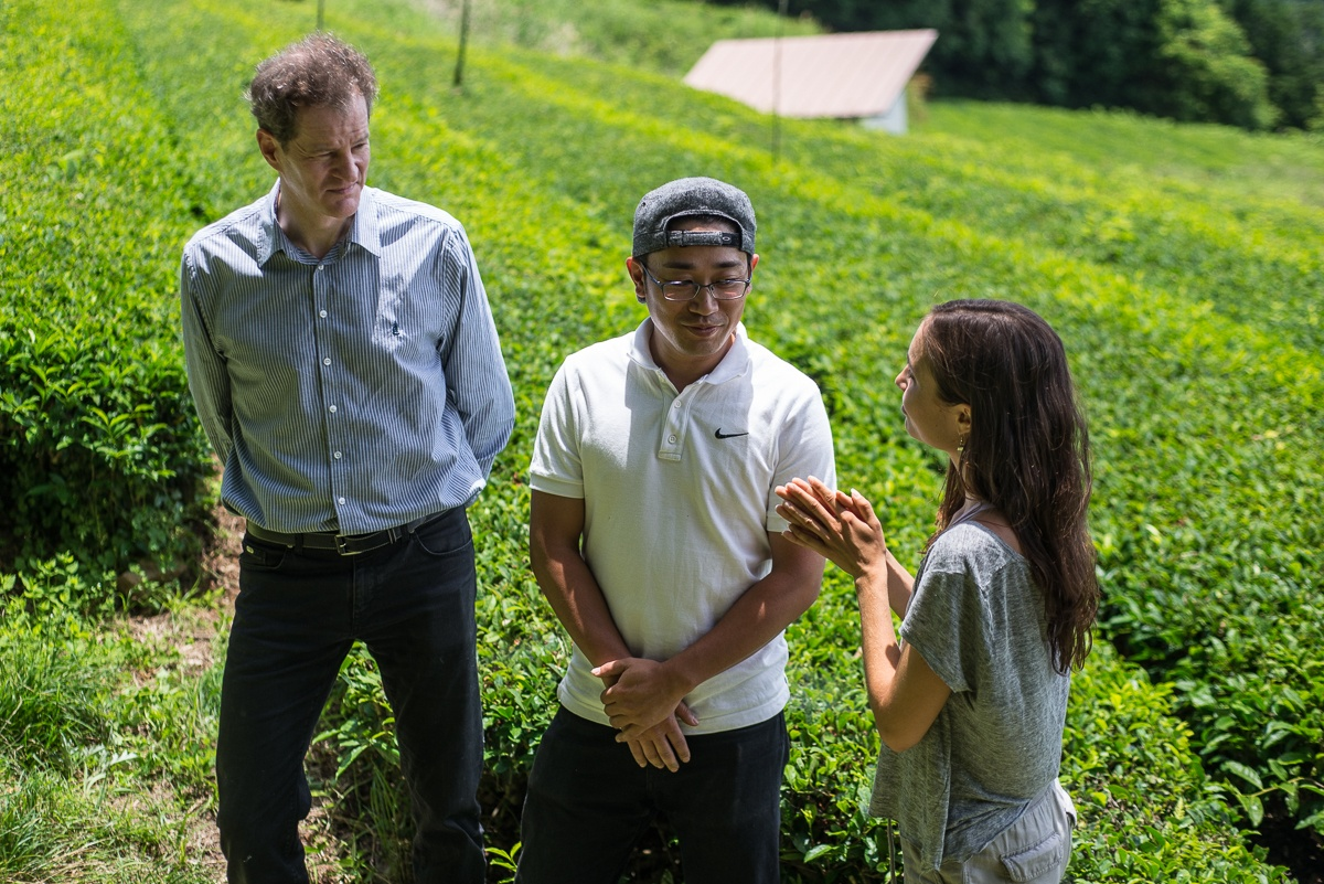 Two men and a woman discuss about green tea growing and producing while standing in tea field in Yame, Fukuoka, Japan.