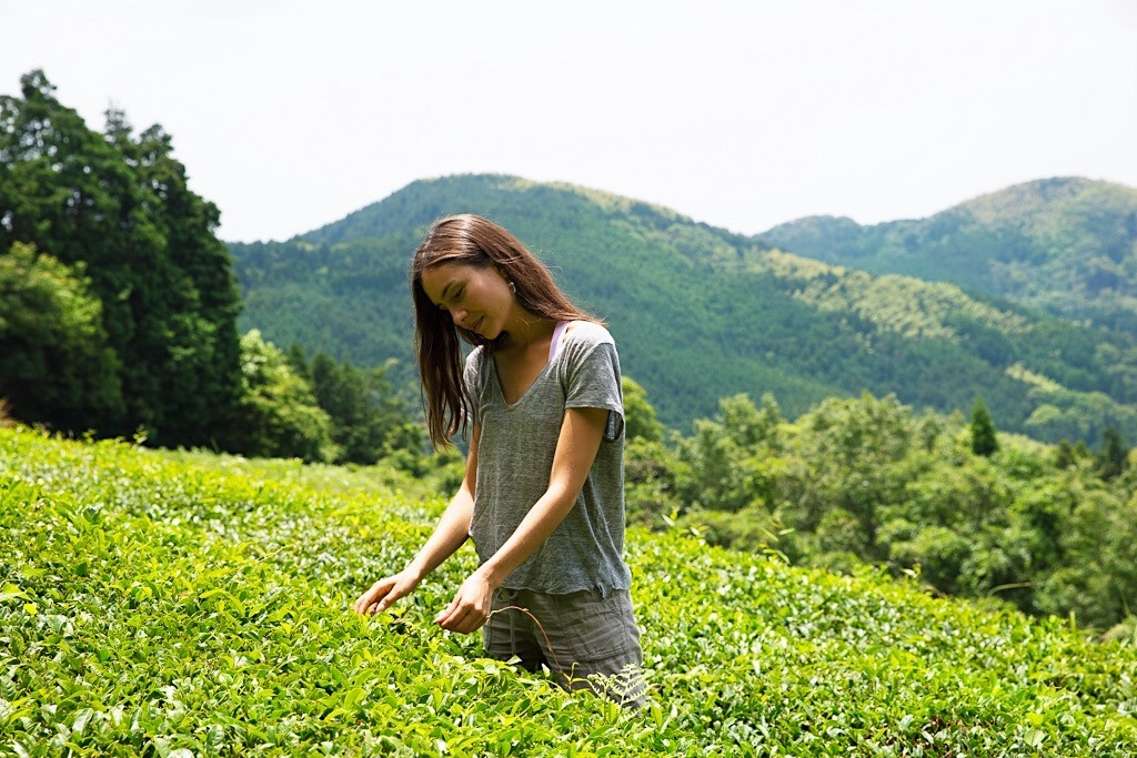 A woman stands in a green tea field in the mountainous area of Yame, Fukuoka, Japan.