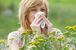 Allergy Sufferer, Grass, Flowers, Pollen