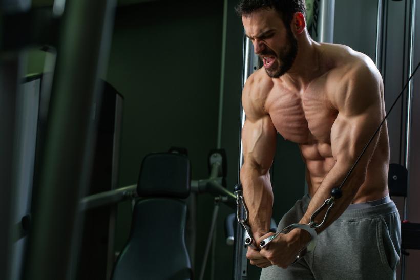 Muscular men prefer an unequal society.