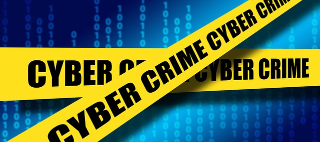 Cybercrime: Internet erodes teenage impulse controls