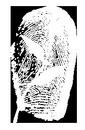 Grass People Tree Thumb Logo
