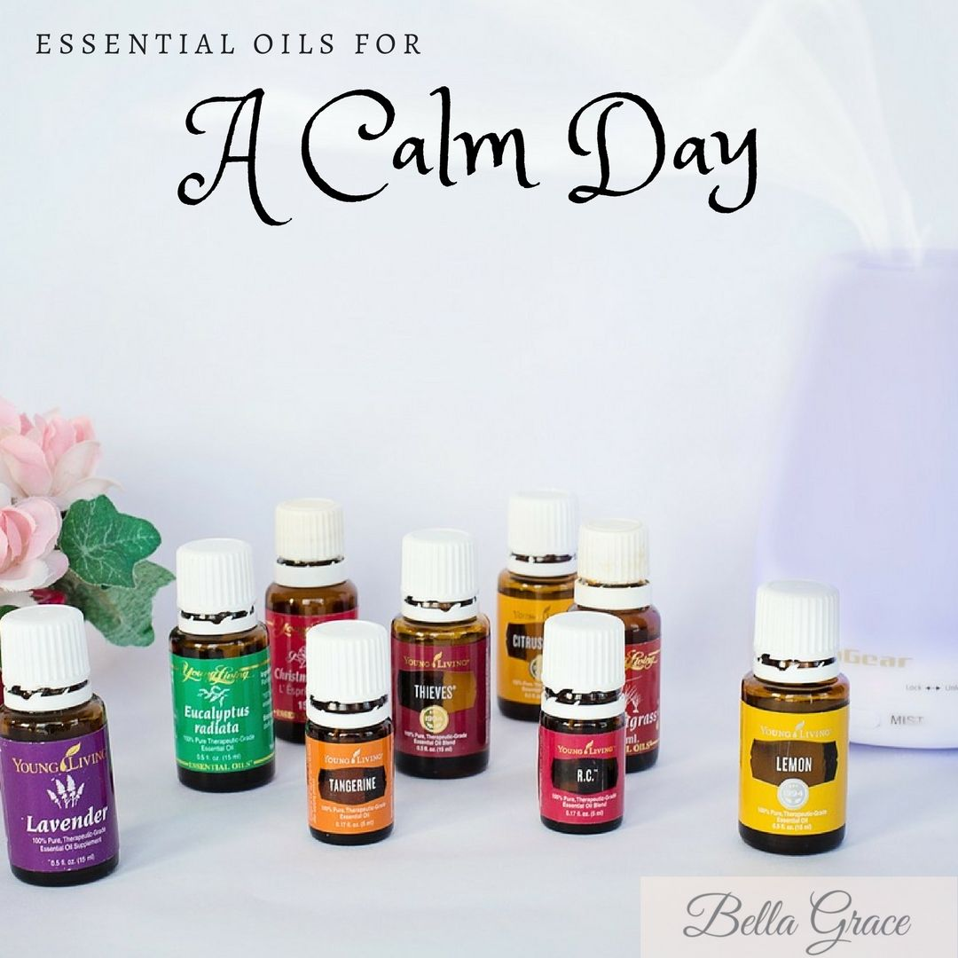 Everyday Calm & Collective Essential Oils Blend