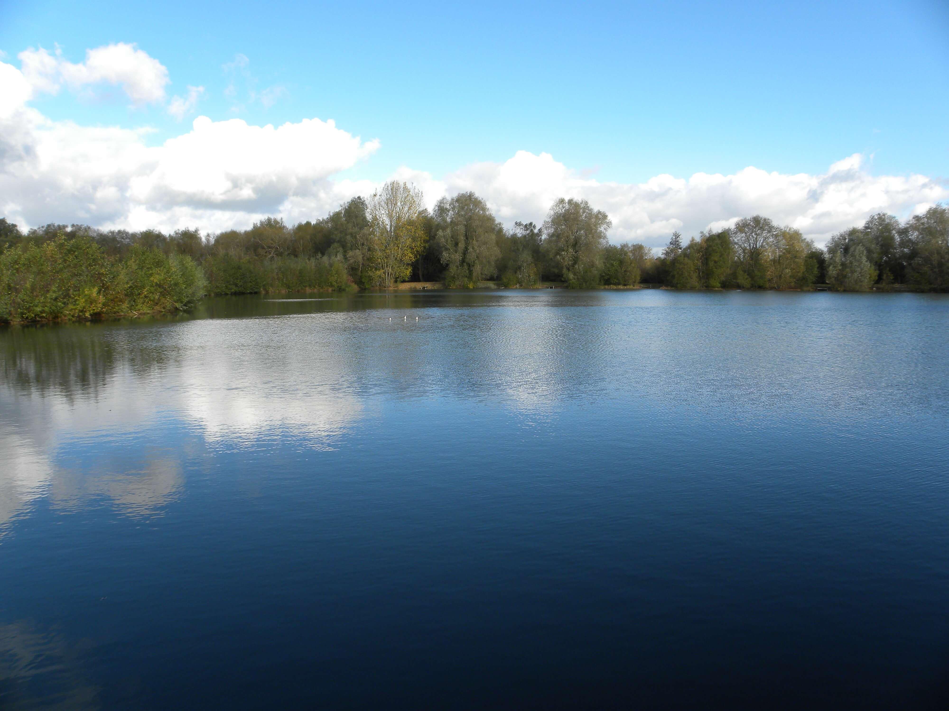 Waterlilly Lodge at Little Horseshoe Lake