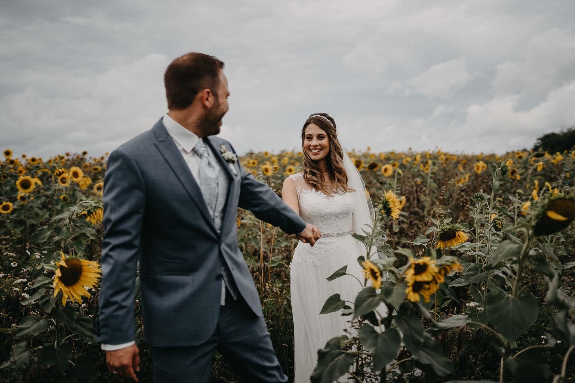 Der Bräutigam führt seine Braut durch ein Feld voller Sonnenblumen.
