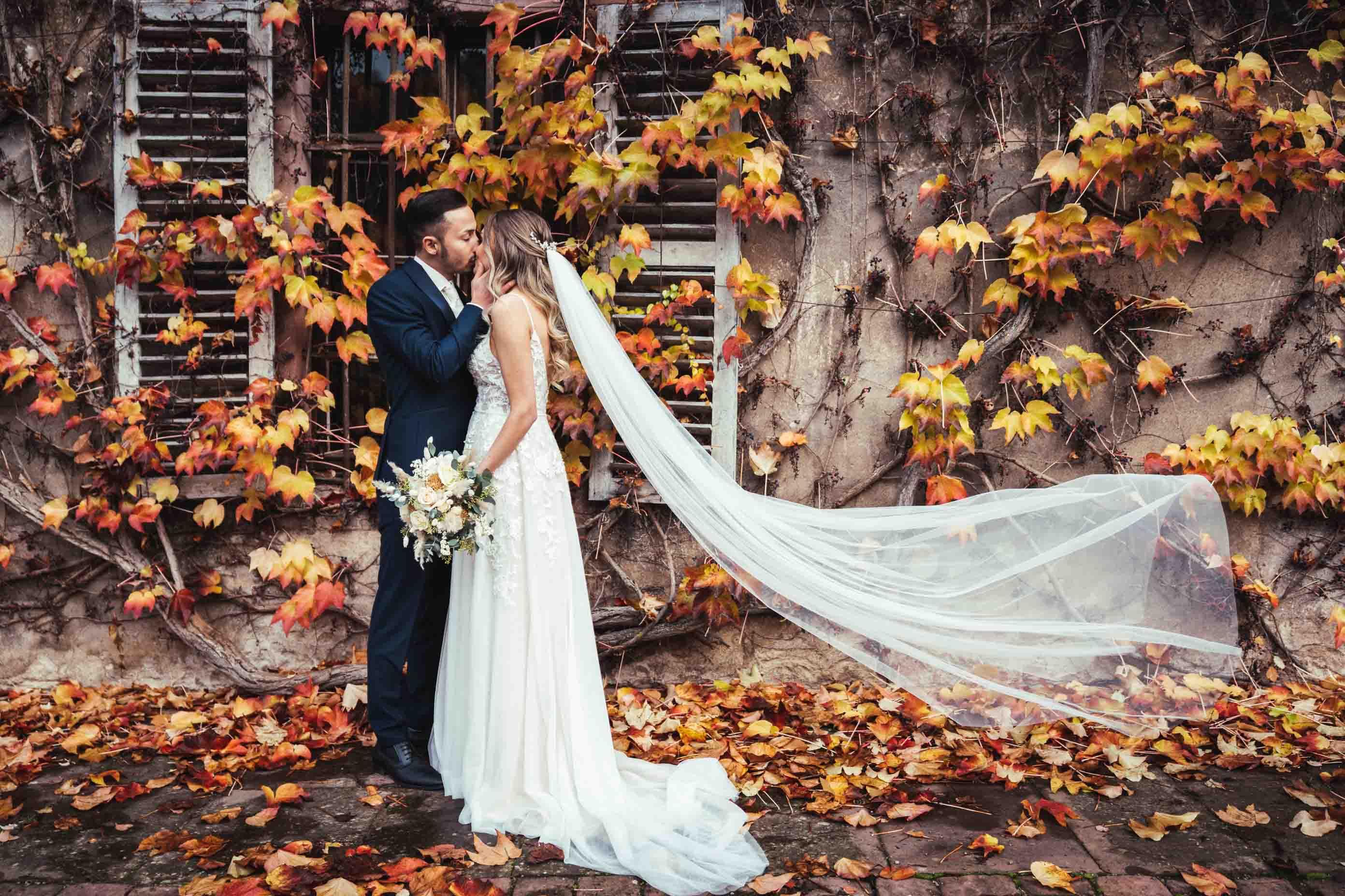Das Brautpaar küsst sich vor einer mit Blättern bewachsenen Wand. Der Schleier weht im Wind.