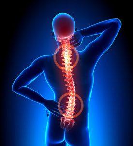 Back-Pain-Fix