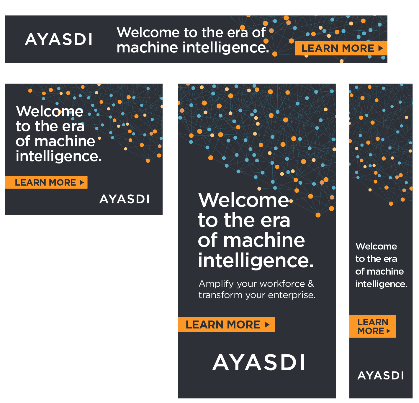 Ayasdi Web Banner Ads / Design by Heidi Skinner