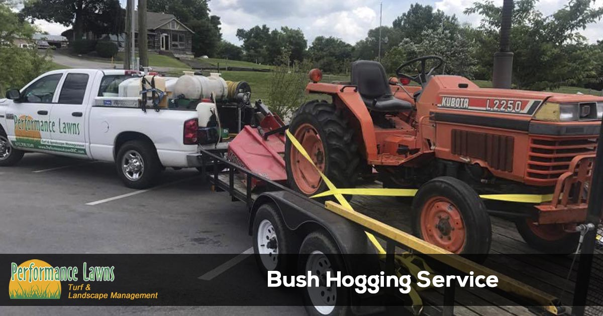 Field mowing and bush hog services in Tennessee