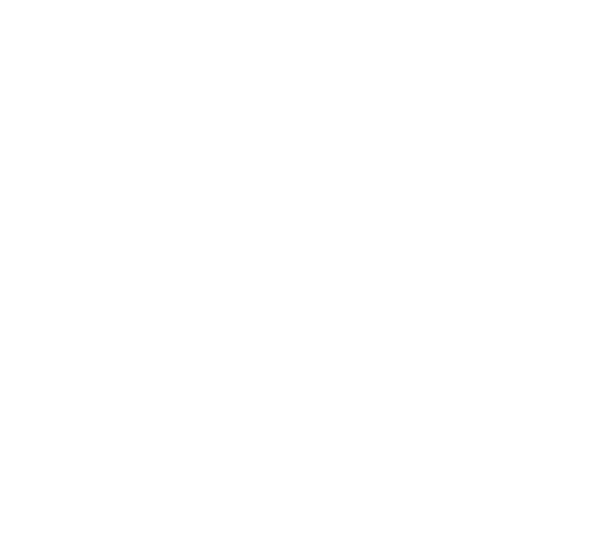Physical Symbol