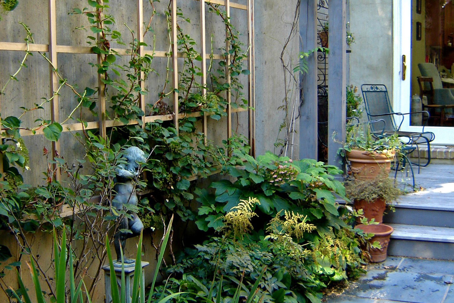 Urban Pocket Garden