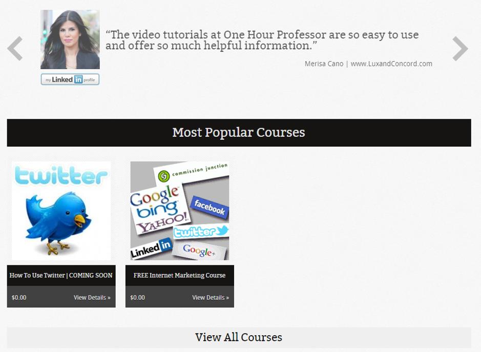 Old Website One Hour Professor