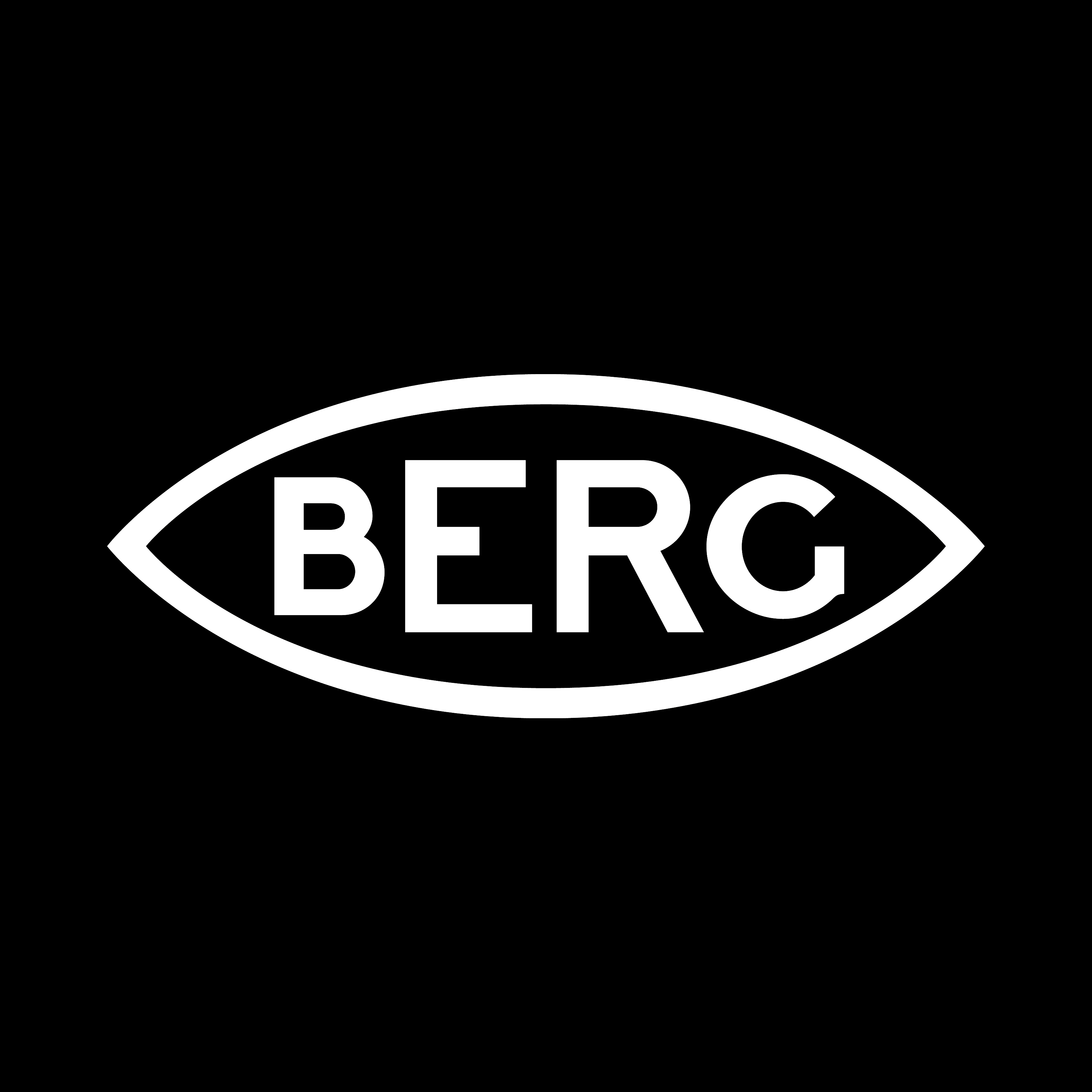 Berg failure