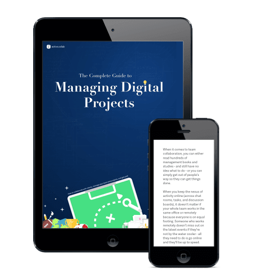 Free business ebook 3: Managing Digital Projects