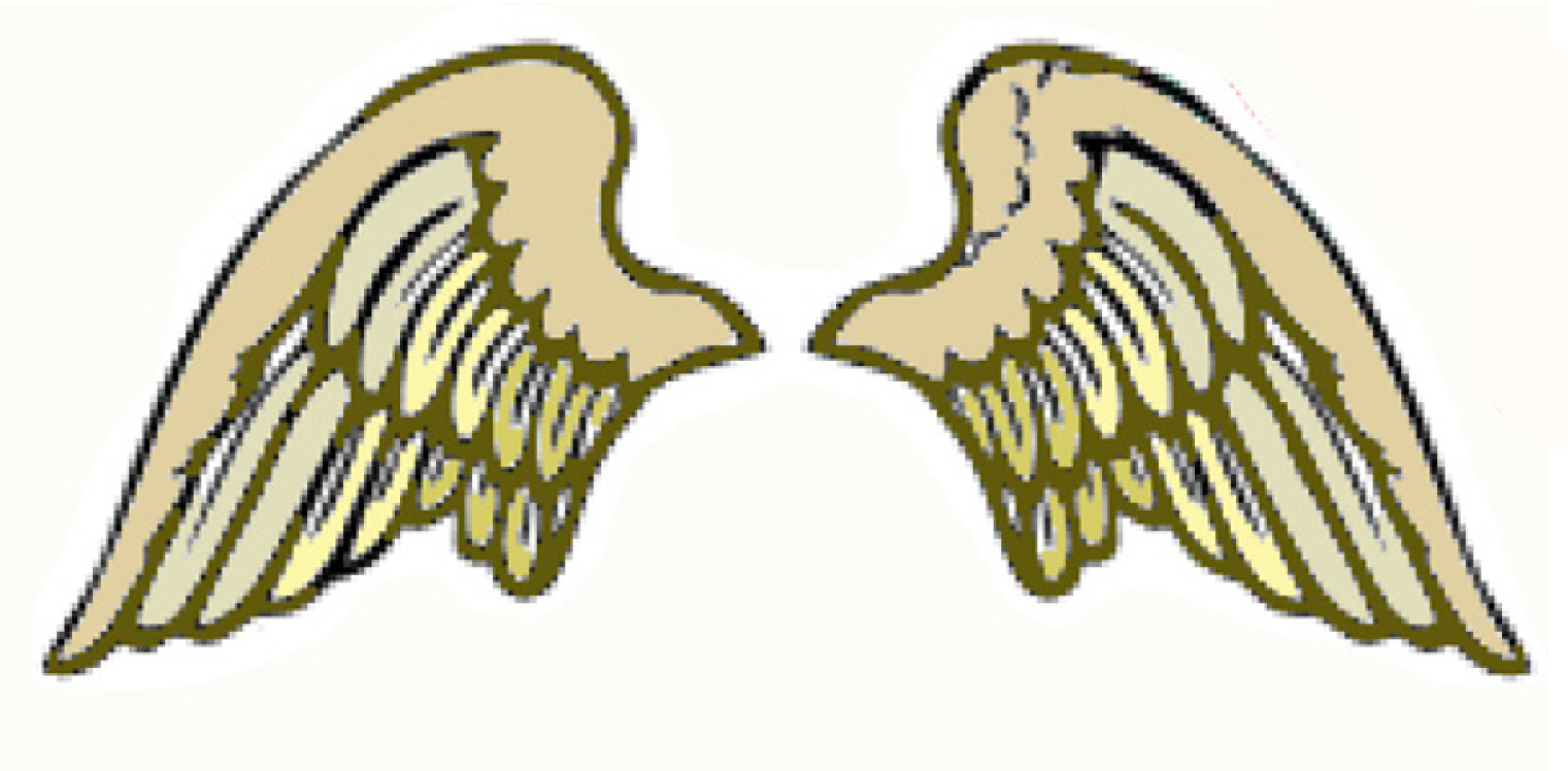 Archangel Sponsors