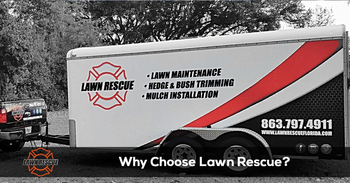 Why Choose Lawn Rescue