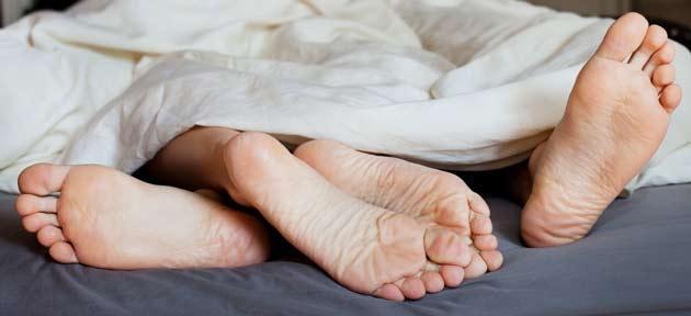 pes-limpos-edredom-deitados-cama