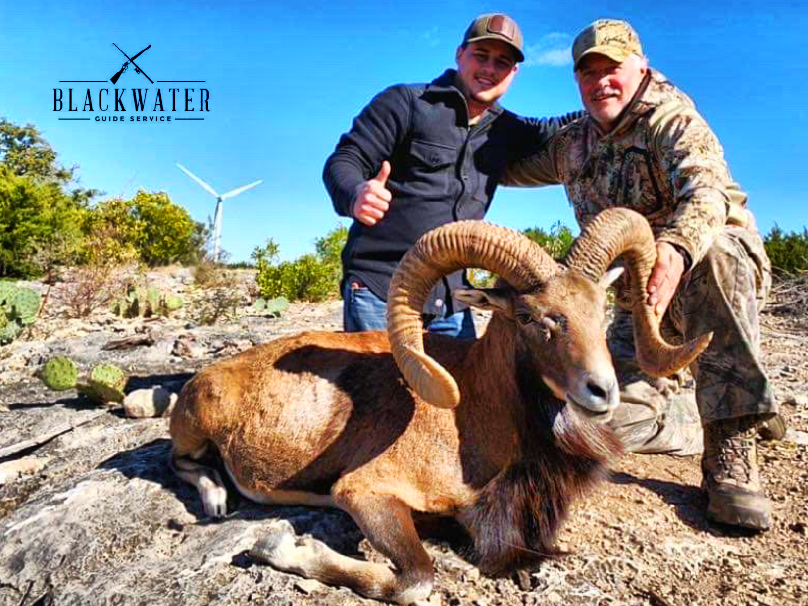 Book Your Afghan Urial Hunt Today!