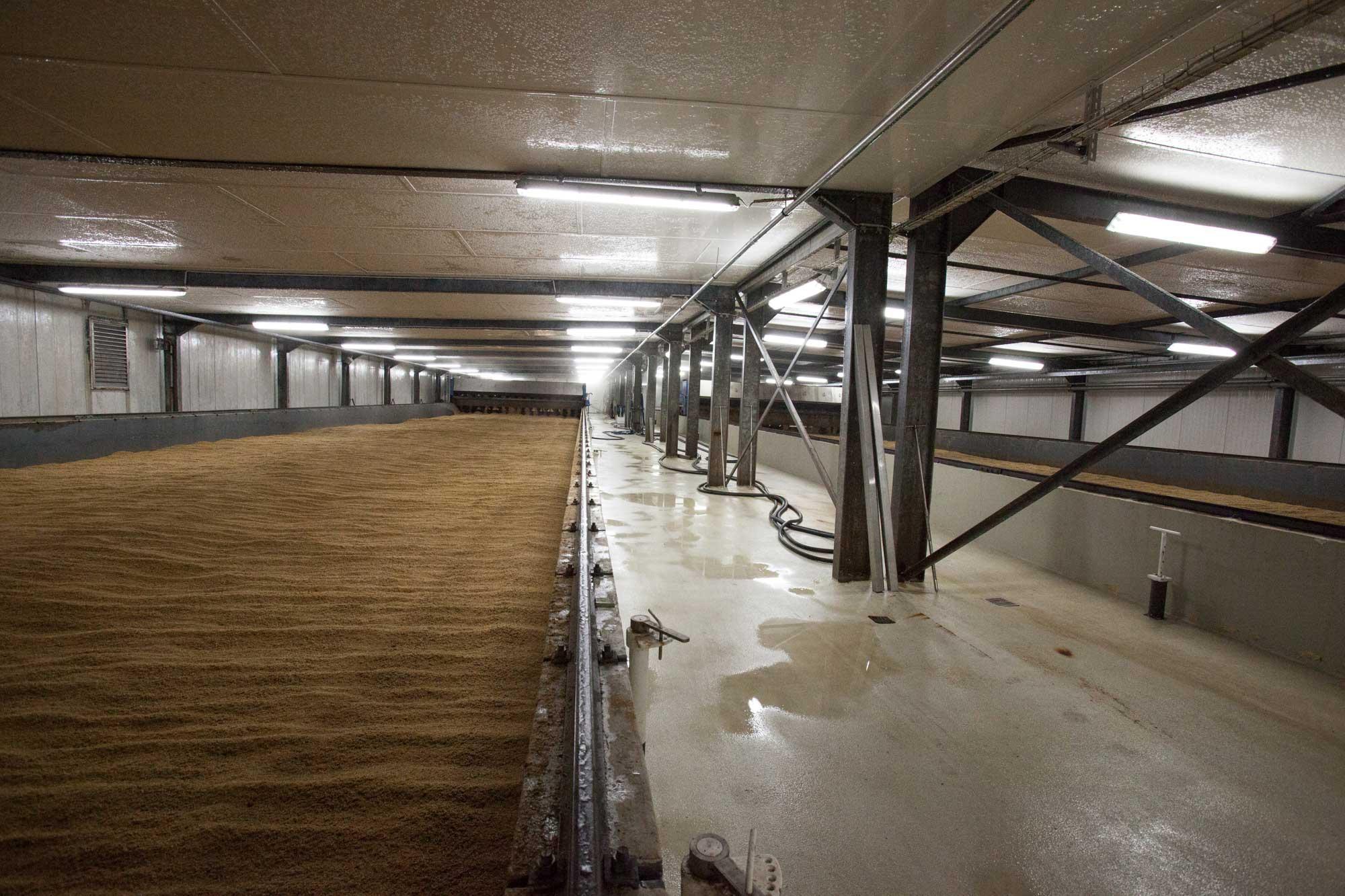 die Keimkästen in der Malzfabrik Schriesheim
