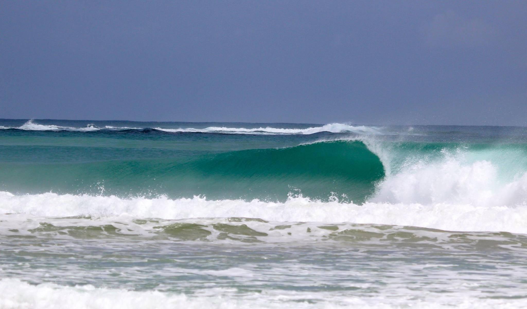 Wave in Bocas del Toro