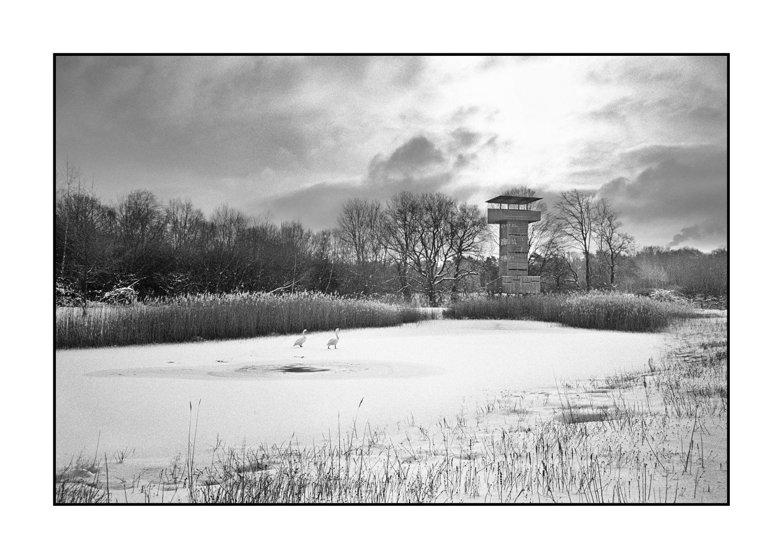 Winterliche Impressionen - Der Beobachtungsturm am Umweltzentrum Westfalen