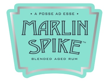 Logo Marlin Spike