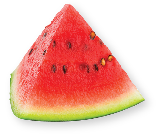 slice of watermellon
