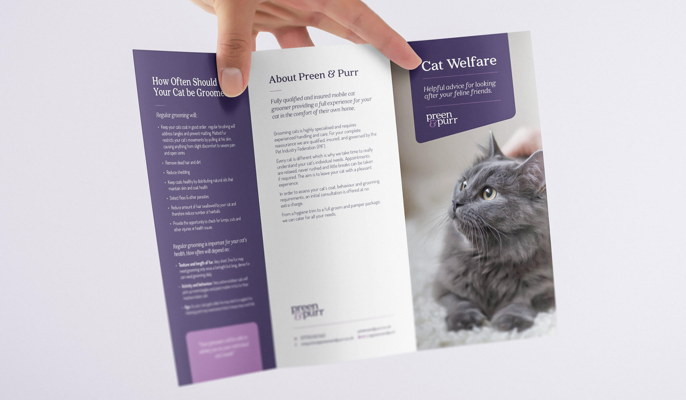 Pet grooming trifold brochure design