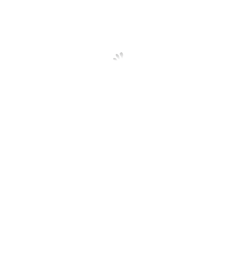 Lopa Bollywood Dance Classes Logo