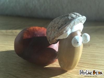 Želva z kaštanu, žaludu, ořechu a modelíny