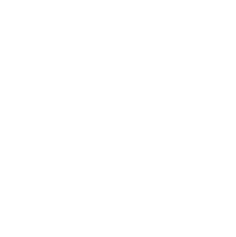 Made in NY Logo - Beast