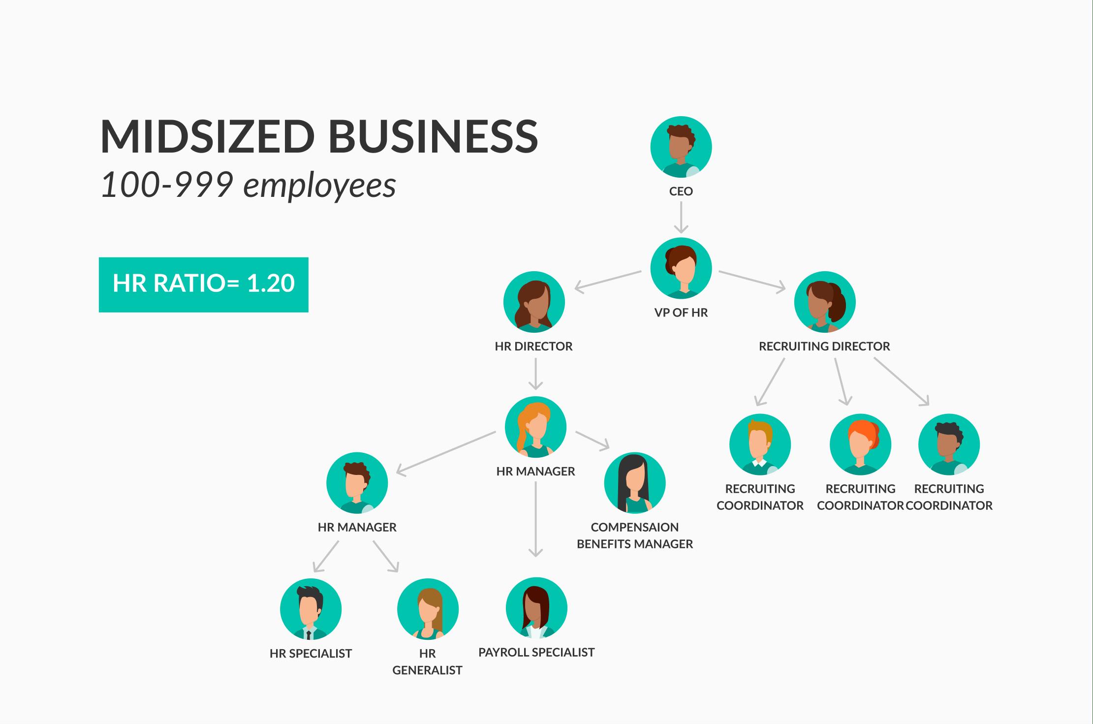 modelo de organizacion para mediana empresa