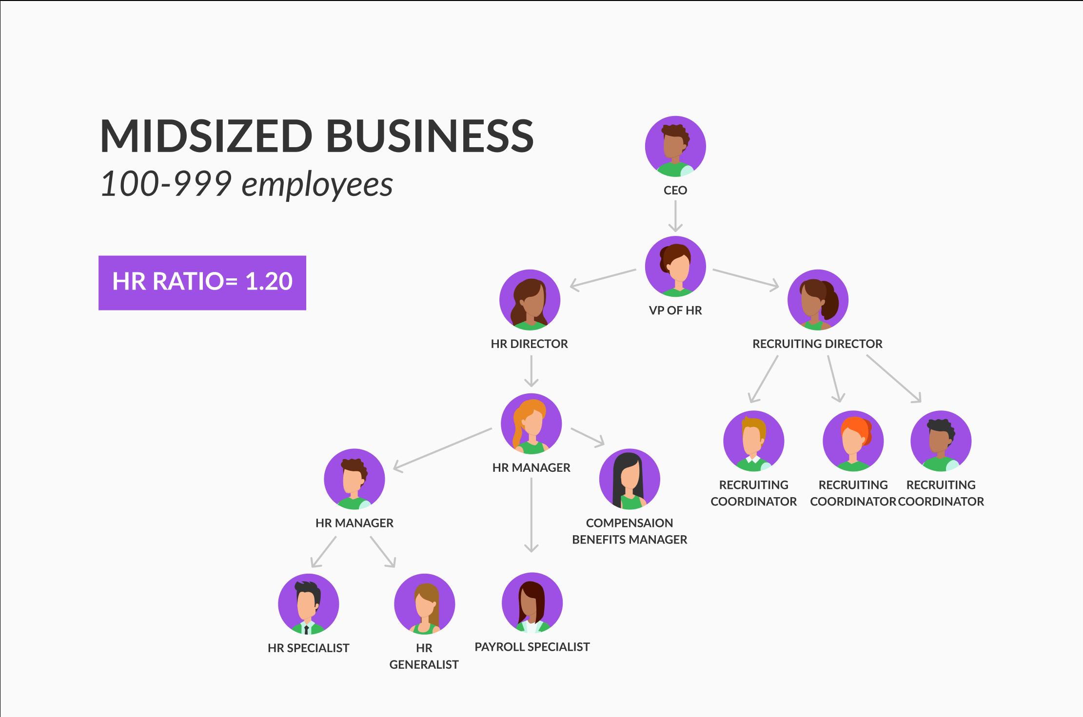 organization model for medium-sized companies