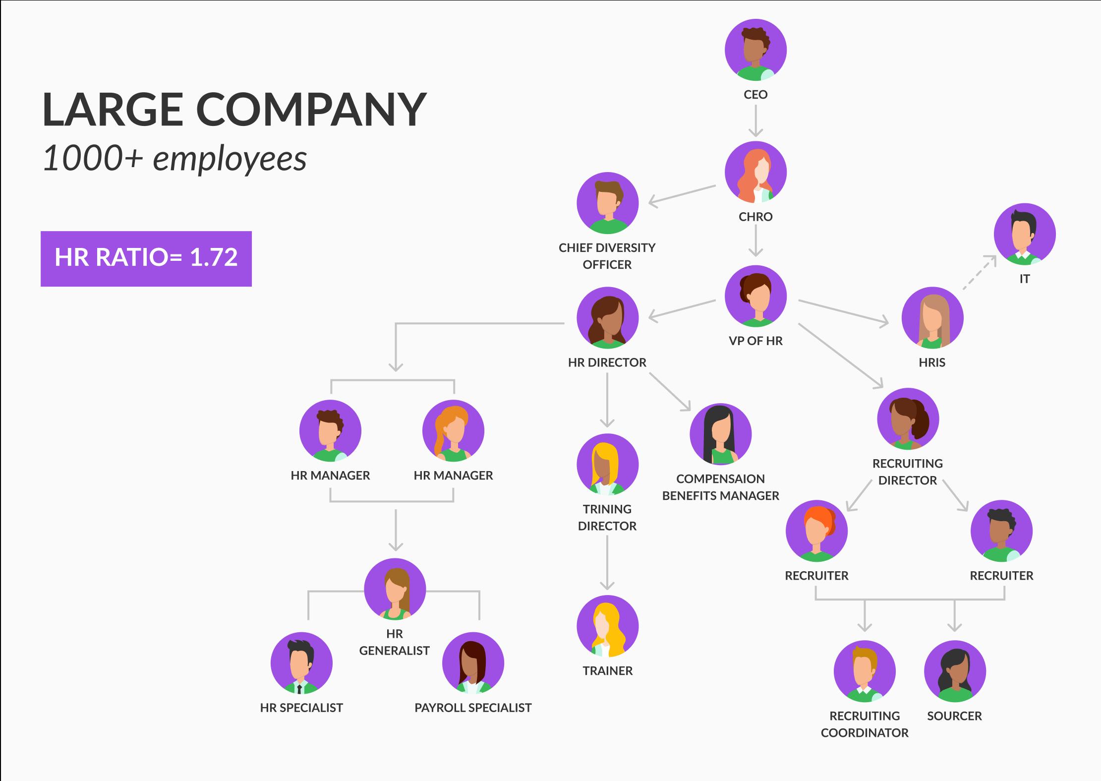 organization model for big companies