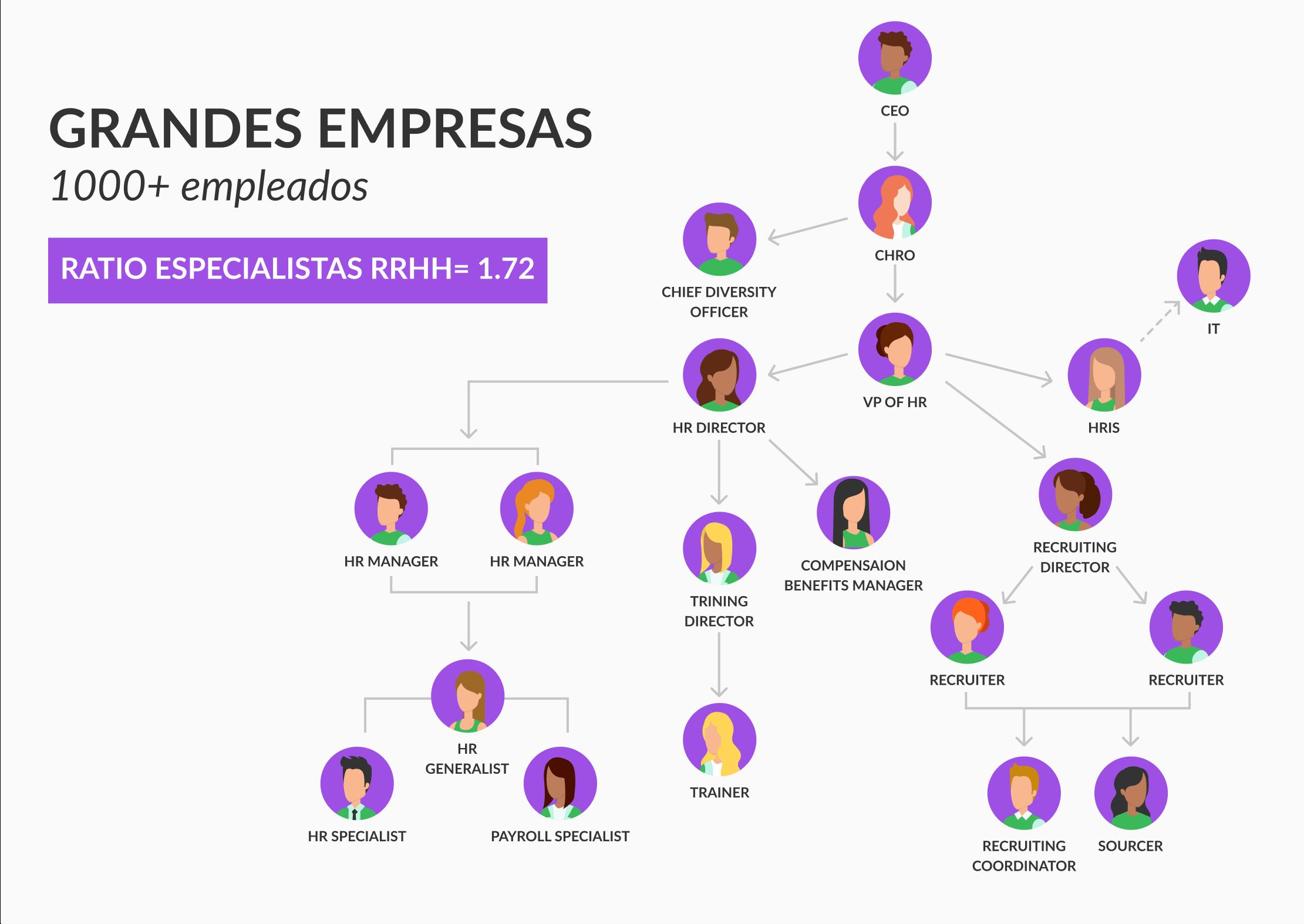 modelo de organizacion para grandes empresas