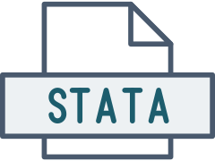Icon of a STATA file