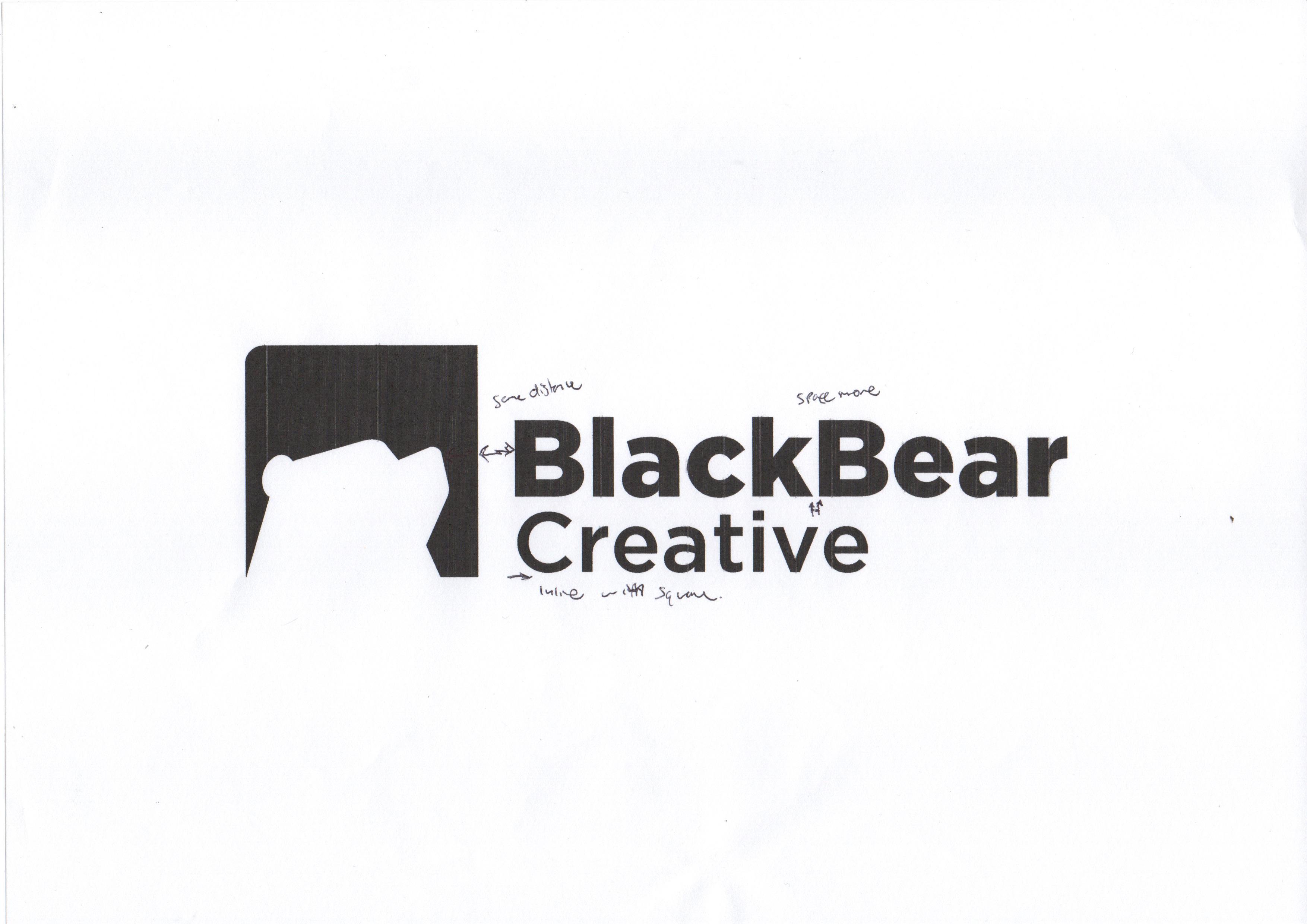 Black Bear concept notes
