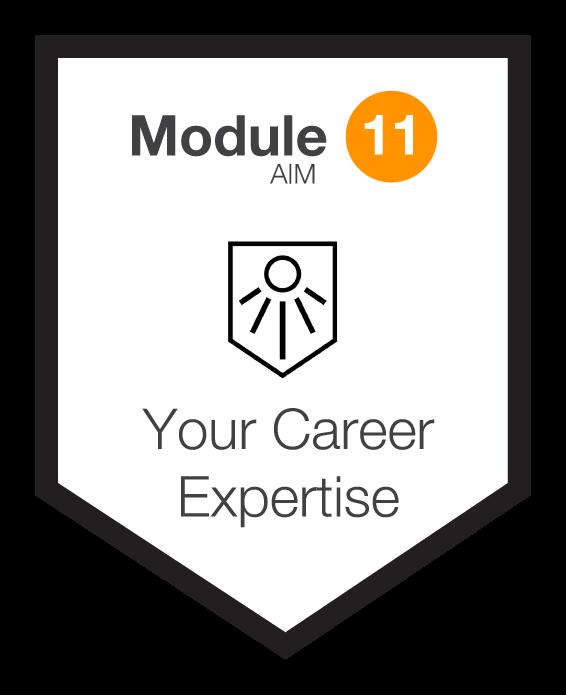 NINETY Careers module 11 shield