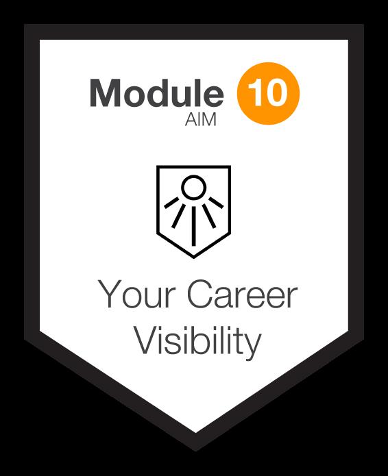 NINETY Careers module 10 shield