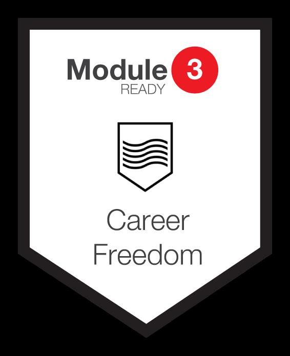 NINETY Careers module 3 shield