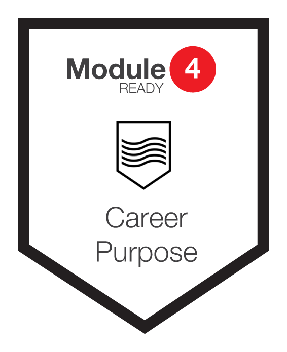 NINETY Careers module 4 shield