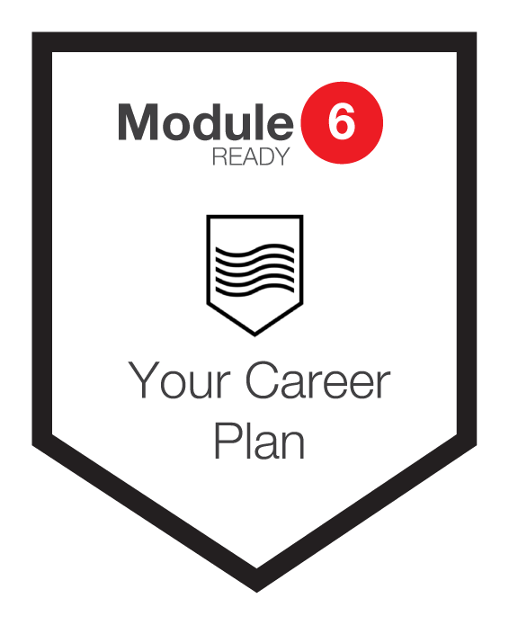 NINETY Careers module 6 shield