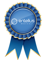 Entellus Medical seal