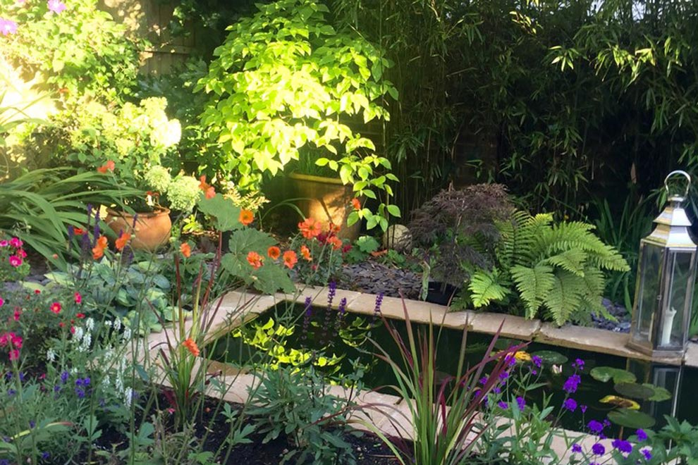 Small courtyard garden with pond and lush planting, Wheathampstead